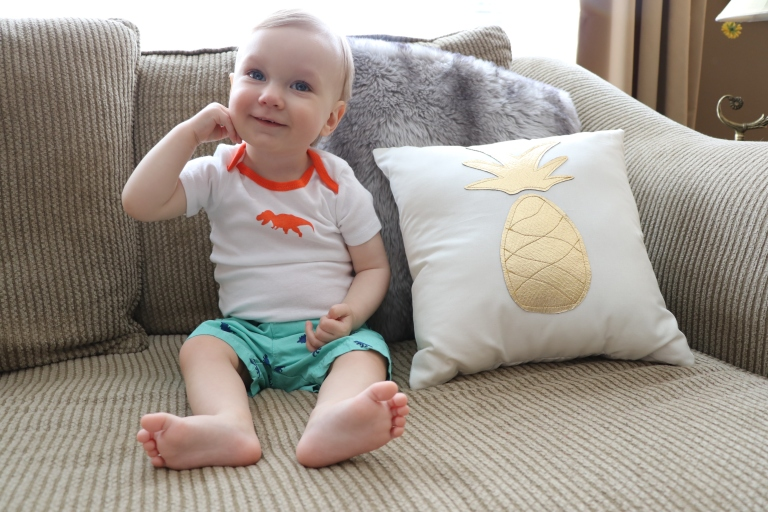 pineapple pillow 5